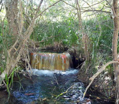 Vertido-ASDEN-Ecologistas-Soria